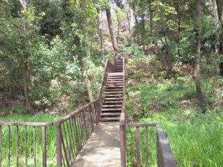 上野毛自然公園の画像1