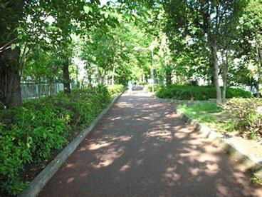 さいわい緑道の画像1