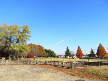 今泉中央公園の画像2