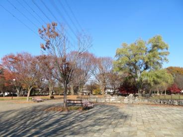 今泉中央公園の画像3