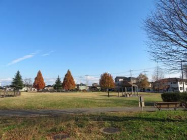 今泉中央公園の画像4