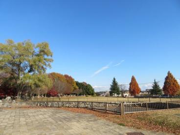 今泉中央公園の画像5