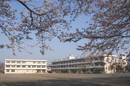 上星小学校の画像1
