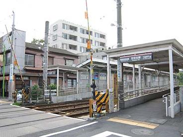世田谷駅の画像1