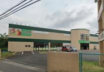 スーパー生鮮館TAIGA(タイガ) 海老名下今泉店