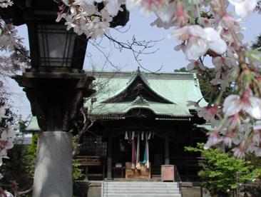 桜神宮の画像1