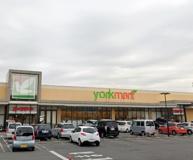 ヨークマート 秦野市緑町店