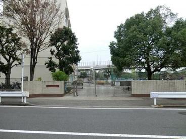横浜市立本牧南小学校の画像1