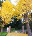 千葉大学 松戸キャンパス