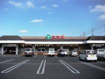 TAIRAYA小金井店