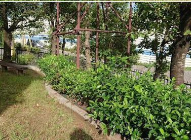 北春日丘1丁目緑地の画像1