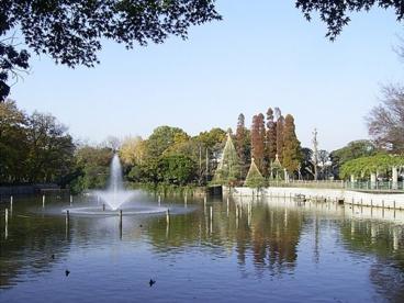 碑文谷公園の画像1