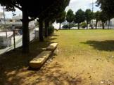 センター公園
