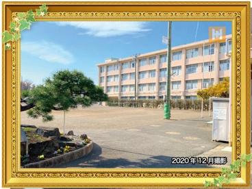 南瀬谷中学校の画像1