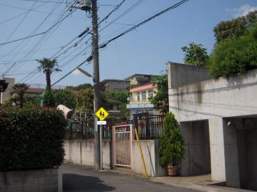 玉川幼稚園の画像2