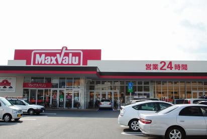 マックスバリュ長門石店の画像1