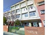 条南小学校
