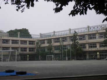 経堂小学校の画像1
