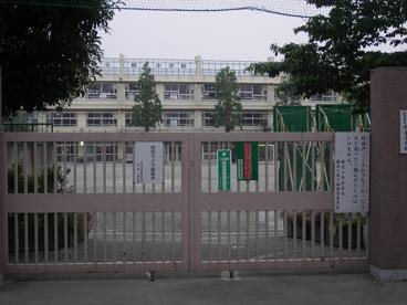 経堂小学校の画像2
