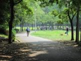 新檜尾公園