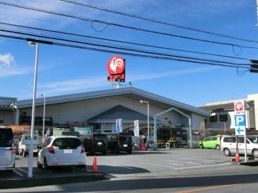 コメリ石和井戸店の画像1