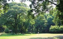 群馬県立公園群馬の森