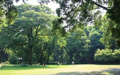 群馬県立公園群馬の森の画像1