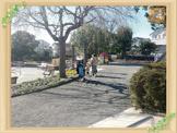 緑園須郷台公園