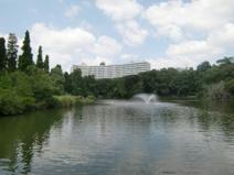 都立 井の頭恩賜公園