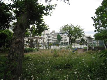 上北沢小学校の画像2