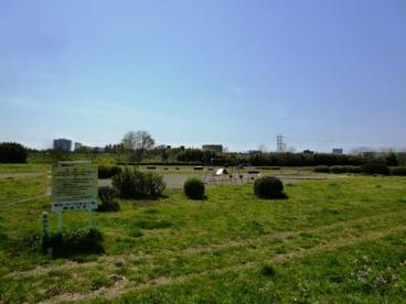 多摩川玉川公園の画像1