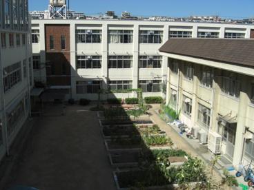 神戸市立霞ヶ丘小学校の画像1