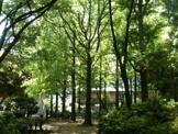 教育の森公園