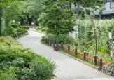田柄川緑道