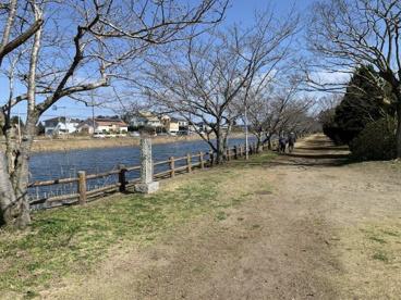 尼ヶ台総合公園の画像1