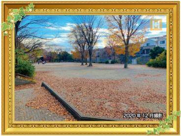 瀬谷中央公園の画像1