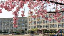 さいたま市立島小学校