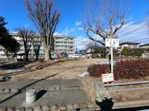 みこと川公園