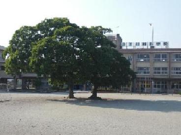 前橋市立 下川淵小学校の画像1