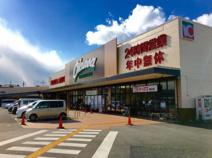 オークワ 狭山店