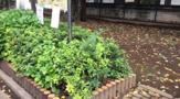 桜童園緑地