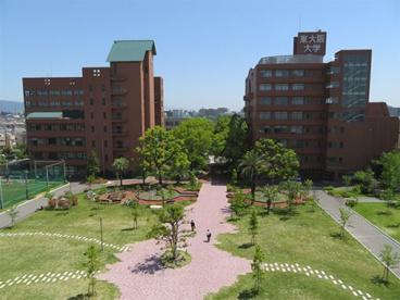 私立東大阪大学の画像1