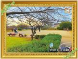 善部町公園