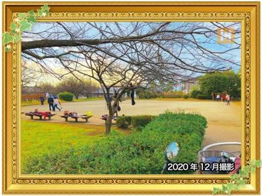 善部町公園の画像1