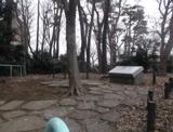 みやのくぼの森緑地
