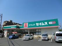 ドラッグセイムス西東京保谷店