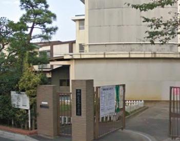 緑小学校の画像1