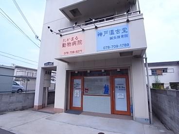 たかまる動物病院の画像1