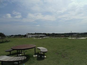 引地川公園 ゆとりの森の画像1