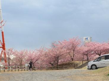 松ヶ崎城址公園の画像1